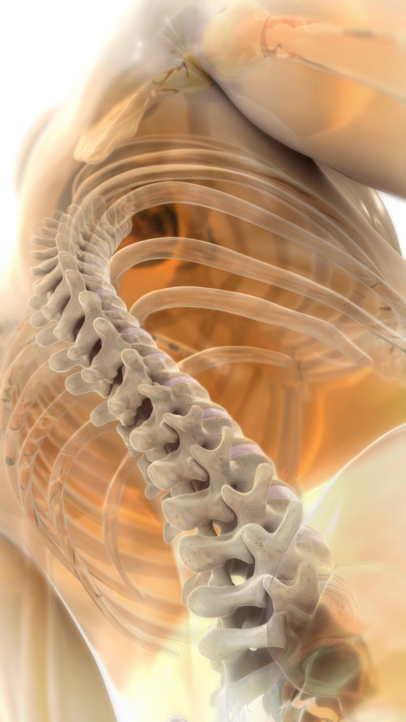 Chiropractic Care   Dr. Nikesh Seth, Scottsdale